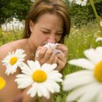 Alergicy – rekomendujemy stronę dla Was