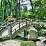 Ładny ,a także schludny ogród to zasługa wielu godzin spędzonych  w jego zaciszu podczas pielegnacji.